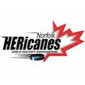Logo for Norfolk Hericanes